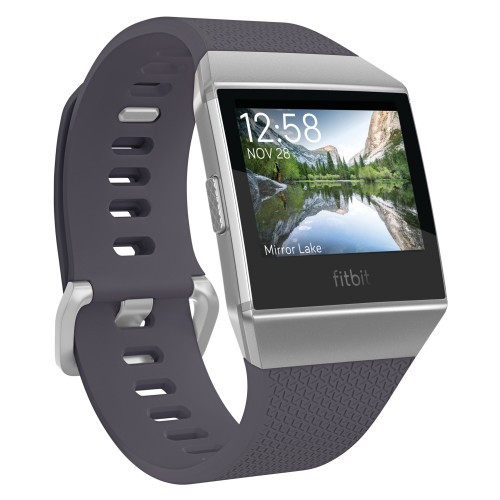 Fitbit Ionic Blue-Gray/Silver-Gray