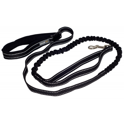 KENNEL EQUIP Elastic Jogging Leash Active