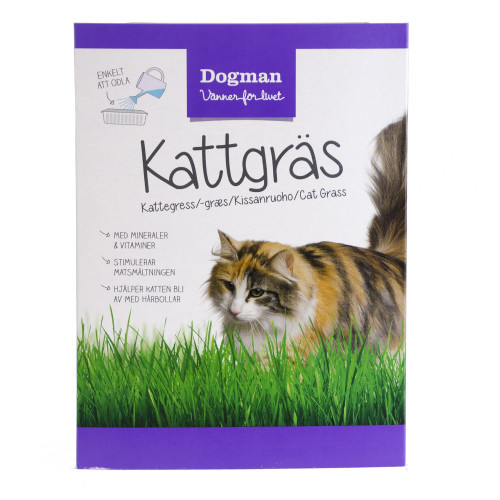 DOGMAN Kattgräs (10-pack)