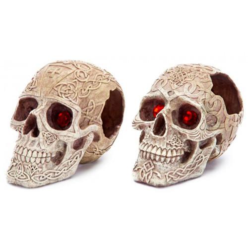 PENNPLAX Skull Gazers