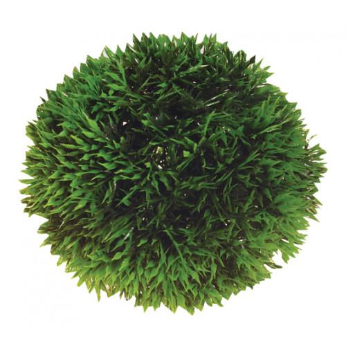 HOBBY Plant Ball