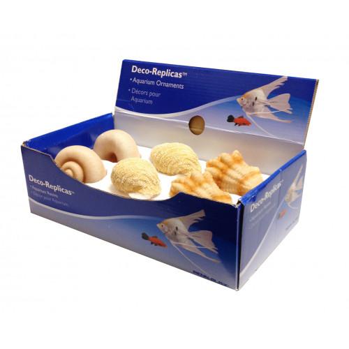 PENNPLAX Snäcka Medium (6-pack)