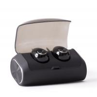 True Wireless Stereo Earphones