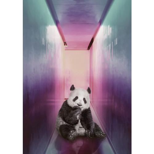 Poster Panda in the corridor