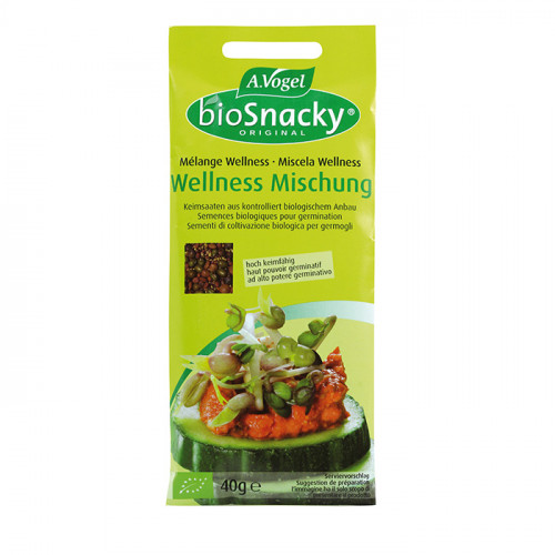 A.Vogel BioSnacky Detox/Wellness mix 40g EKO