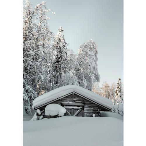 Poster Snö på taket
