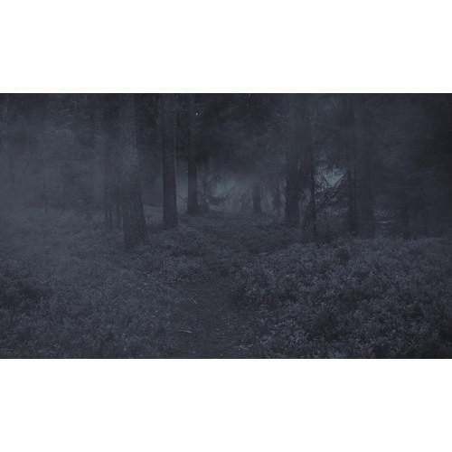 Poster Skogen #2