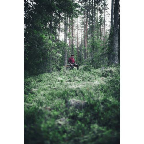Poster Skogen
