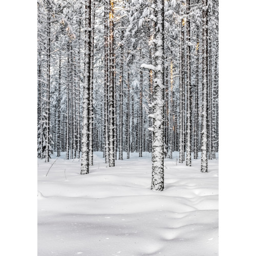 Poster Vinter