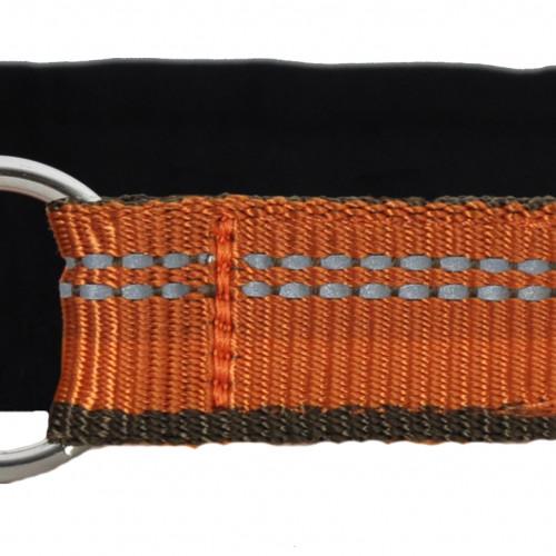 KENNEL EQUIP Half Choke Dog Collar Active