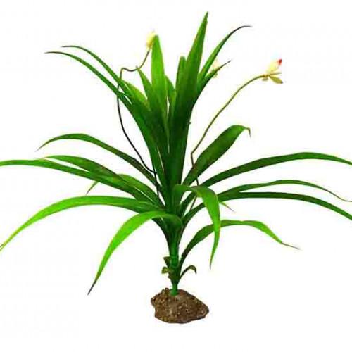 DOGMAN Dekor Växt