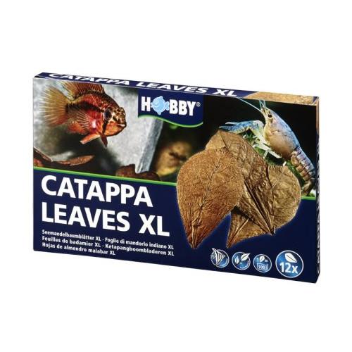 HOBBY Catappa Leaves