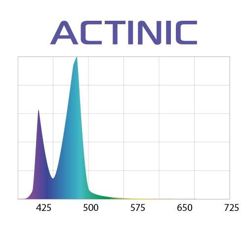 AQUAEL Lysrör LED Slim Actinic