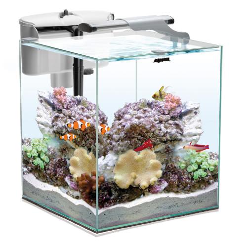 AQUAEL Nano Reef Duo