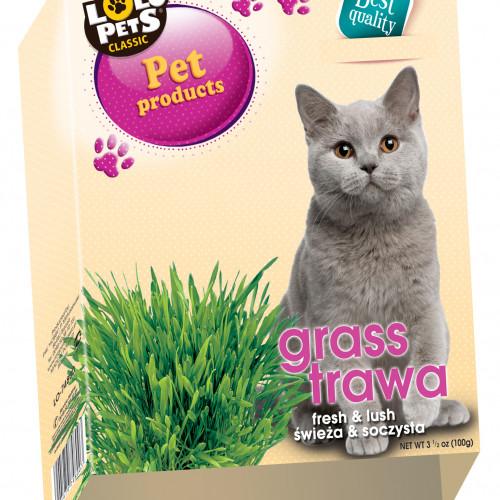 LoLo Pets Kattgräs i låda Lolopets 100 g