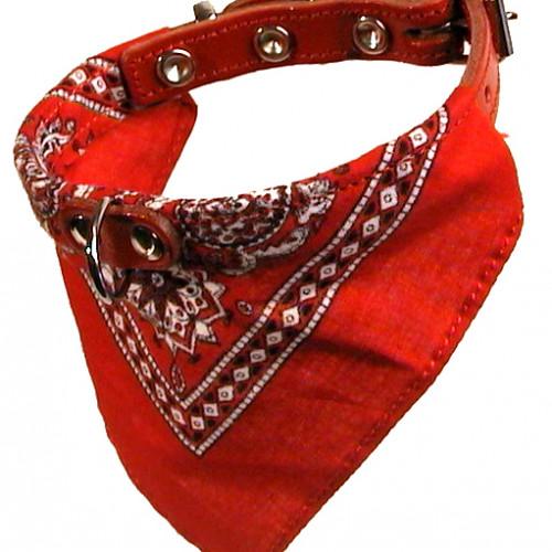 Gibbon Halsband med  snusnäsduk Röd 12mm/30cm