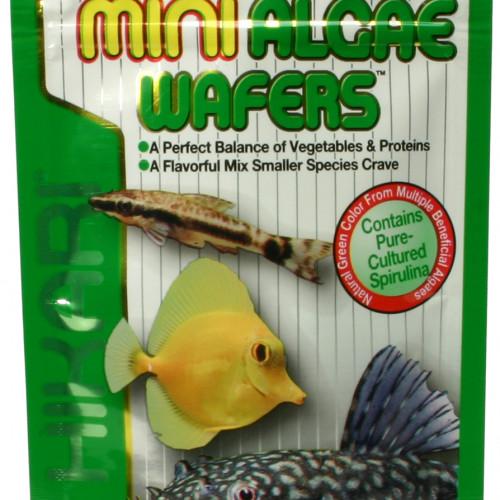 Hikari Hikari Mini-Algae Wafers 22 g