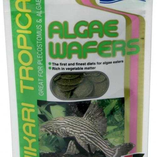 Hikari Hikari Algae Wafers 40 g