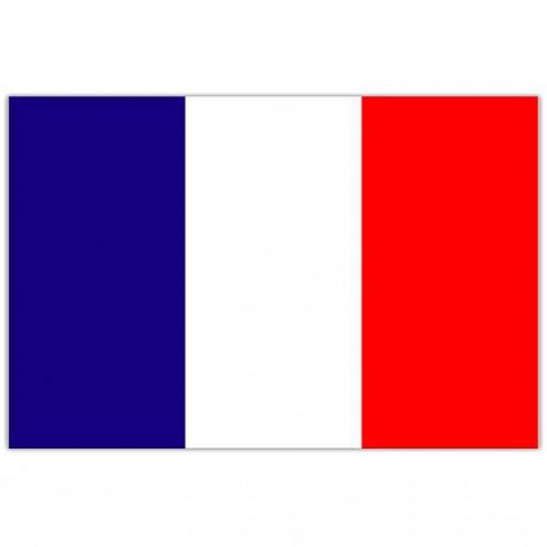 Flagga Frankrike