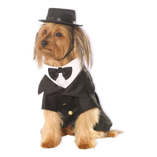 Kostym Hund Maskeraddräkt