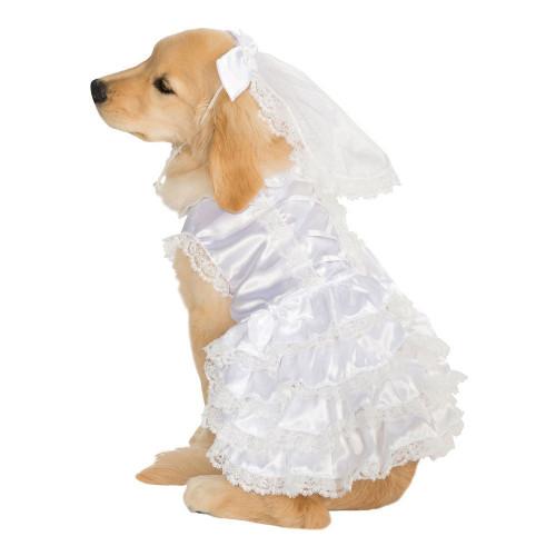 Brudklänning Hund Maskeraddräkt