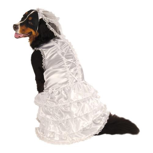 Brudklänning Hund XL Maskeraddräkt