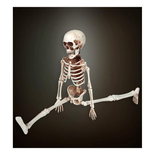 Justerbart Skelett